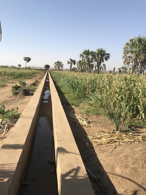 קילומטרים של תעלות השקיה חוצות את 800 הדונמים המחולקים שווה בין הקהילות המארחות ובין הפליטים | תמונה: Lisa Sim/Epoch Times
